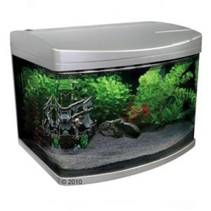 classica aquacurve 50 liter gerundete front silber aktuelle top angebote im web g nstig. Black Bedroom Furniture Sets. Home Design Ideas