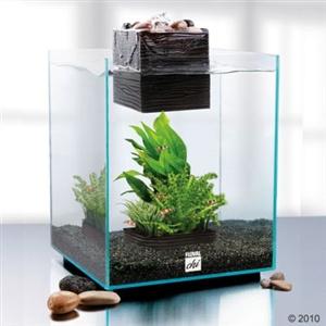 fluval chi nano aquarium mit led 19 liter aktuelle top. Black Bedroom Furniture Sets. Home Design Ideas